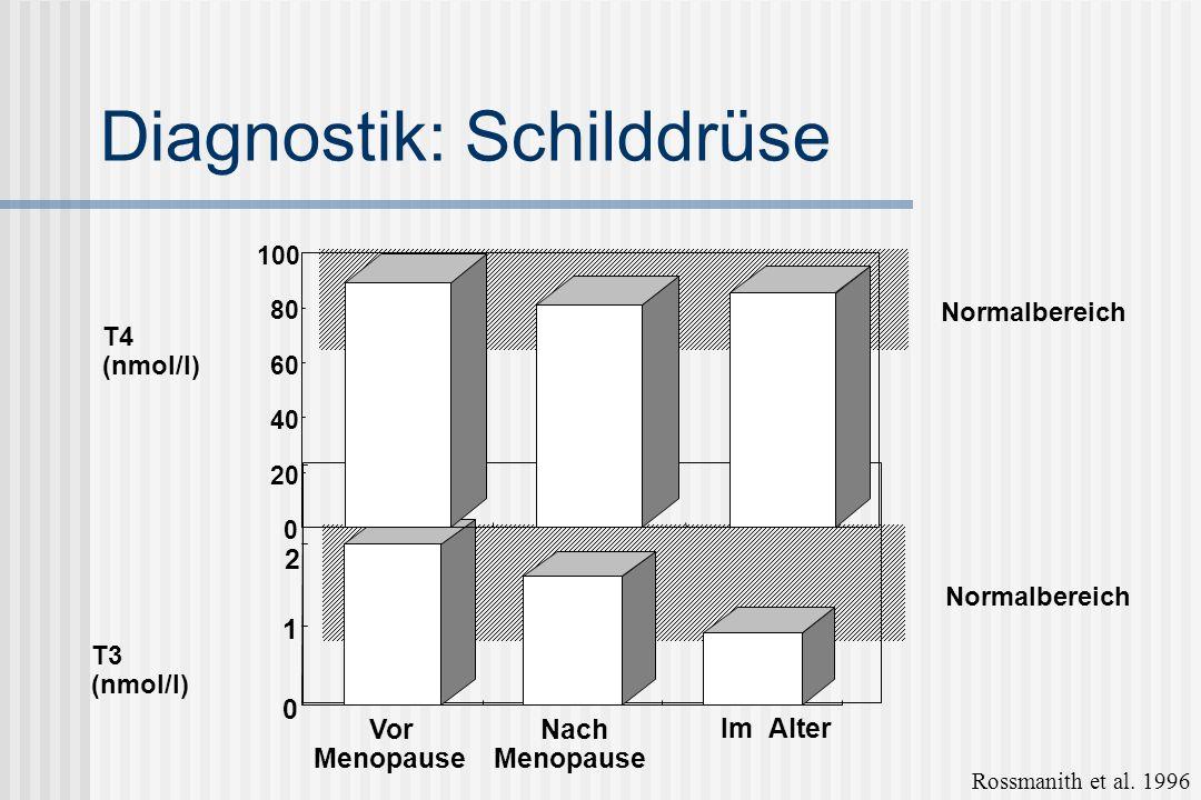 Diagnostik: Schilddrüse