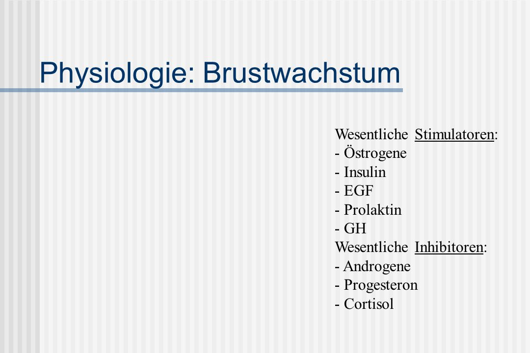 Physiologie: Brustwachstum