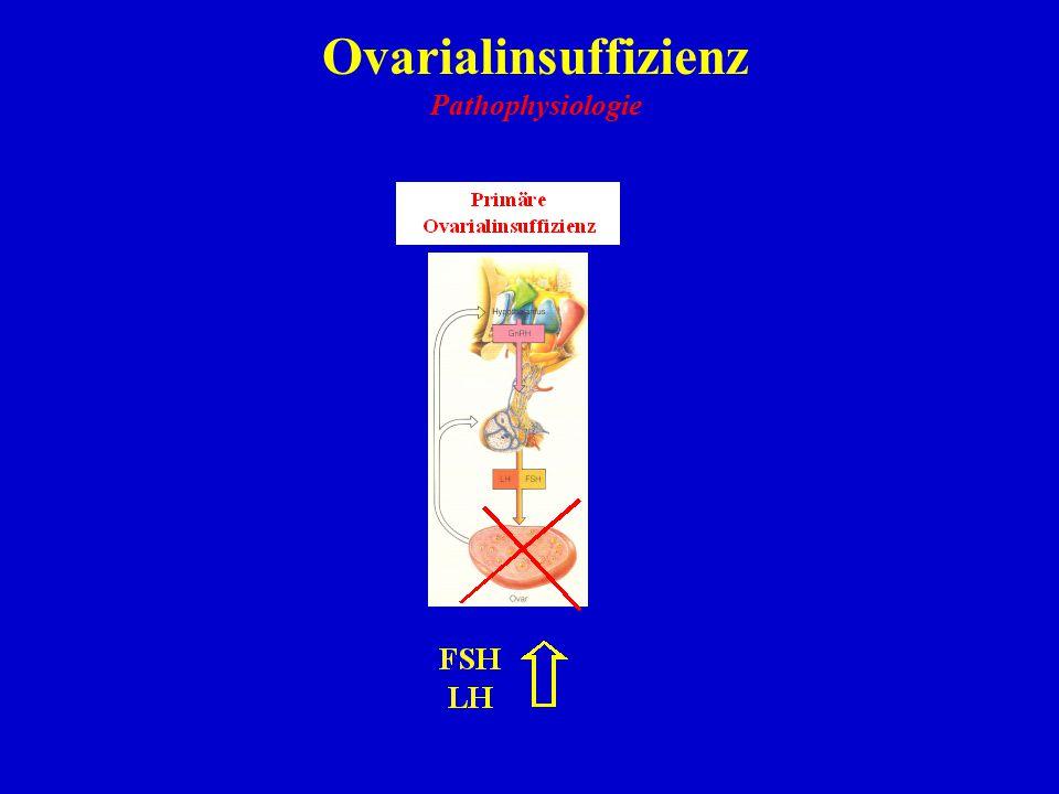 Ovarialinsuffizienz Pathophysiologie 16