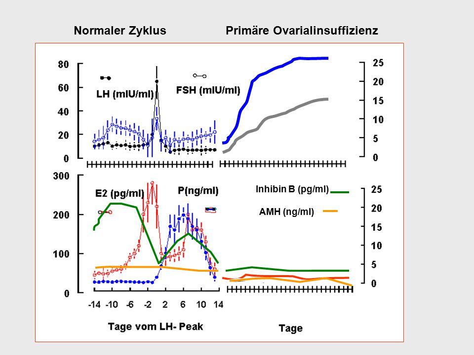 Normaler Zyklus Primäre Ovarialinsuffizienz