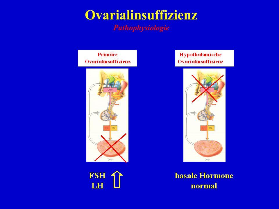 Ovarialinsuffizienz Pathophysiologie 22