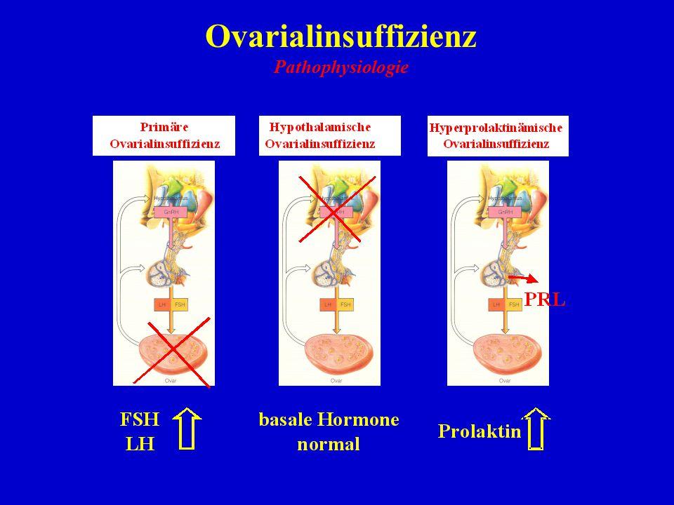 Ovarialinsuffizienz Pathophysiologie 27