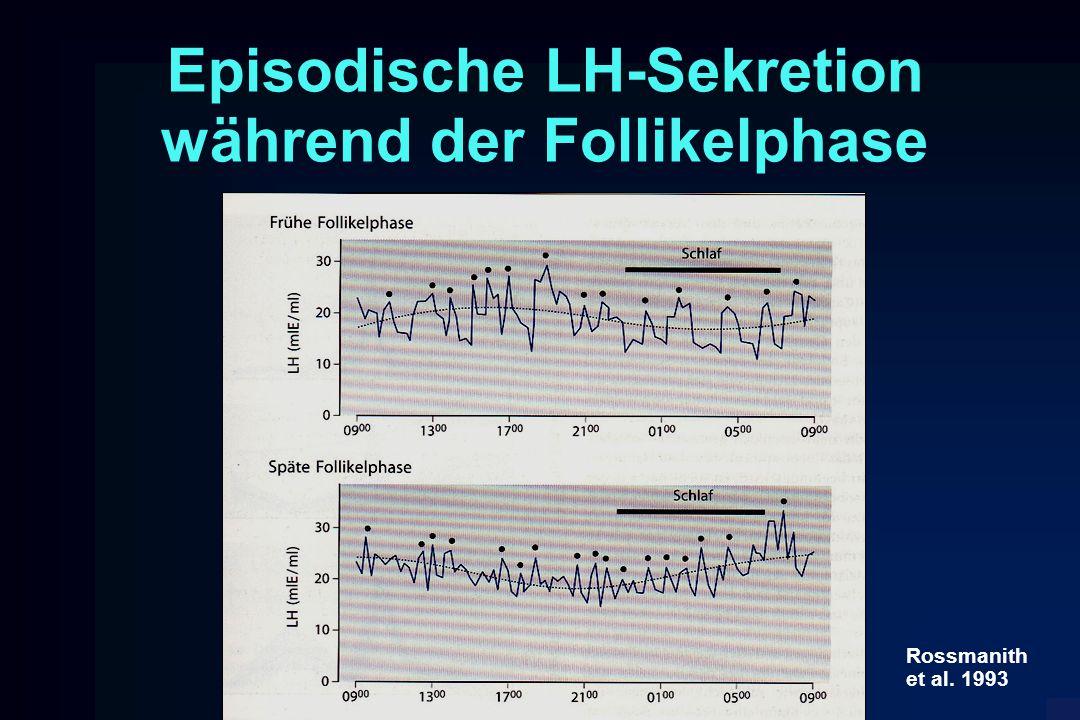 Episodische LH-Sekretion während der Follikelphase