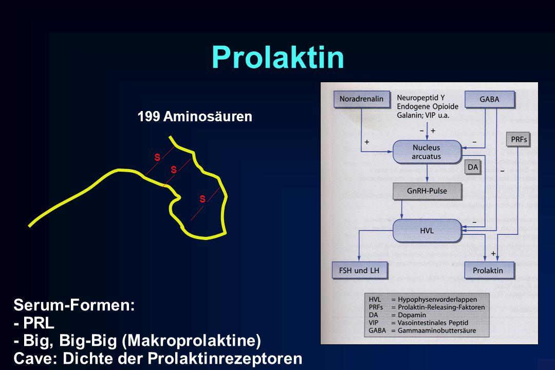 Prolaktin Serum-Formen: - PRL - Big, Big-Big (Makroprolaktine)