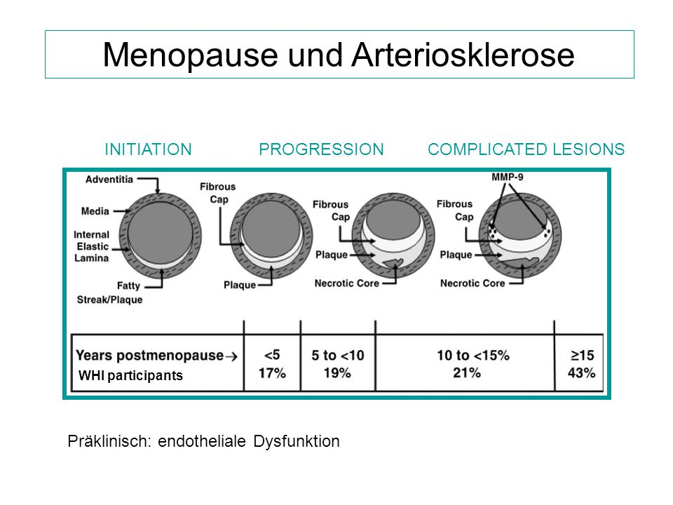 Menopause und Arteriosklerose