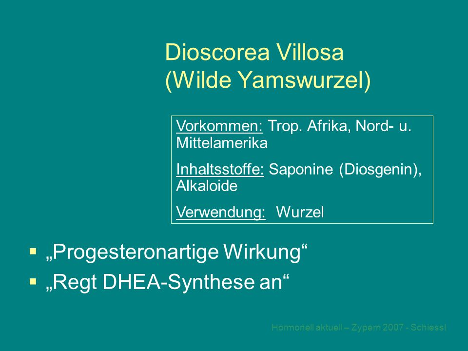Dioscorea Villosa (Wilde Yamswurzel)