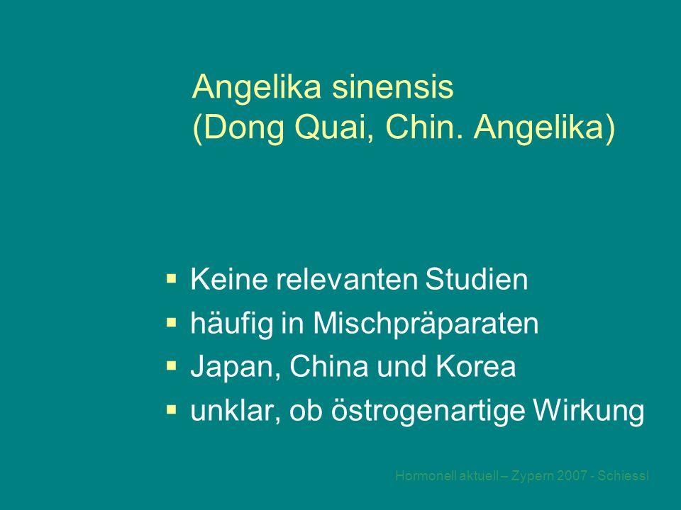 Angelika sinensis (Dong Quai, Chin. Angelika)