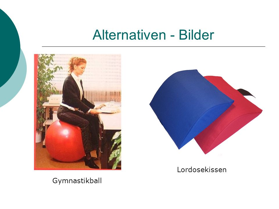 Alternativen - Bilder Lordosekissen Gymnastikball