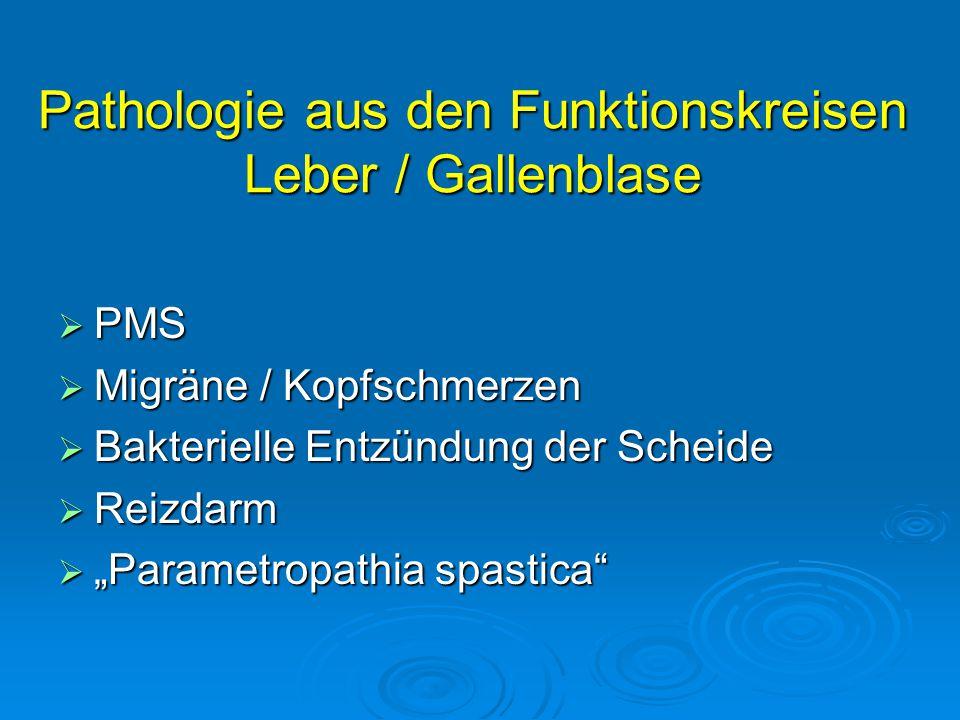 Pathologie aus den Funktionskreisen Leber / Gallenblase