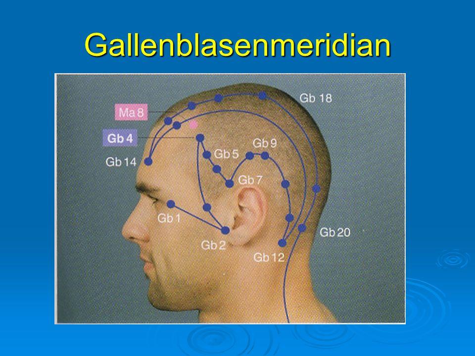 Gallenblasenmeridian