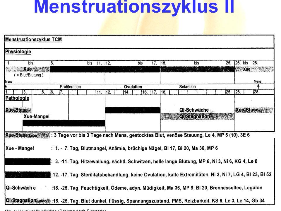 Menstruationszyklus II