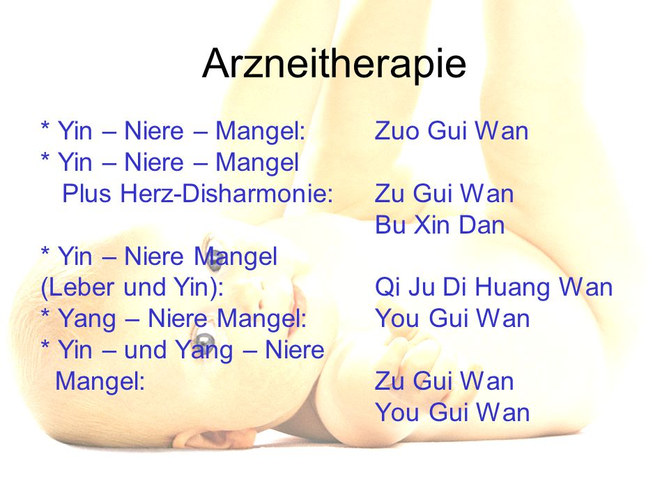 Arzneitherapie * Yin – Niere – Mangel: Zuo Gui Wan