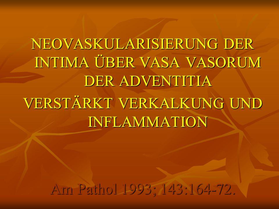 NEOVASKULARISIERUNG DER INTIMA ÜBER VASA VASORUM DER ADVENTITIA