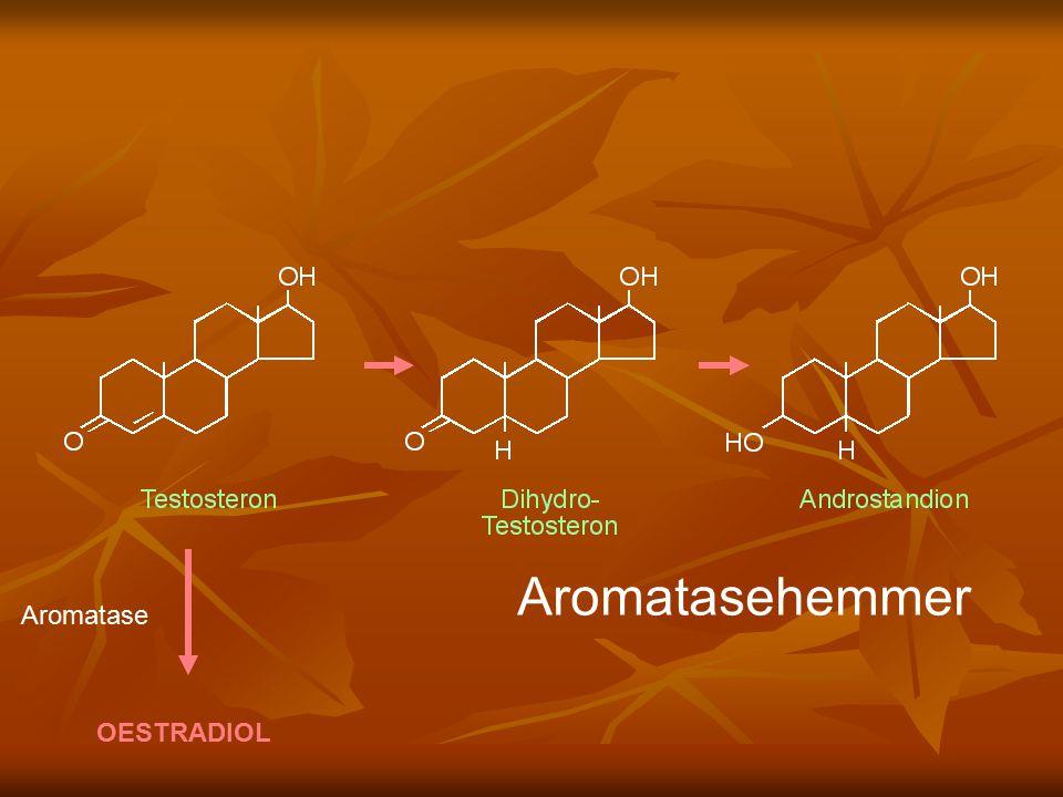 Aromatasehemmer Aromatase OESTRADIOL
