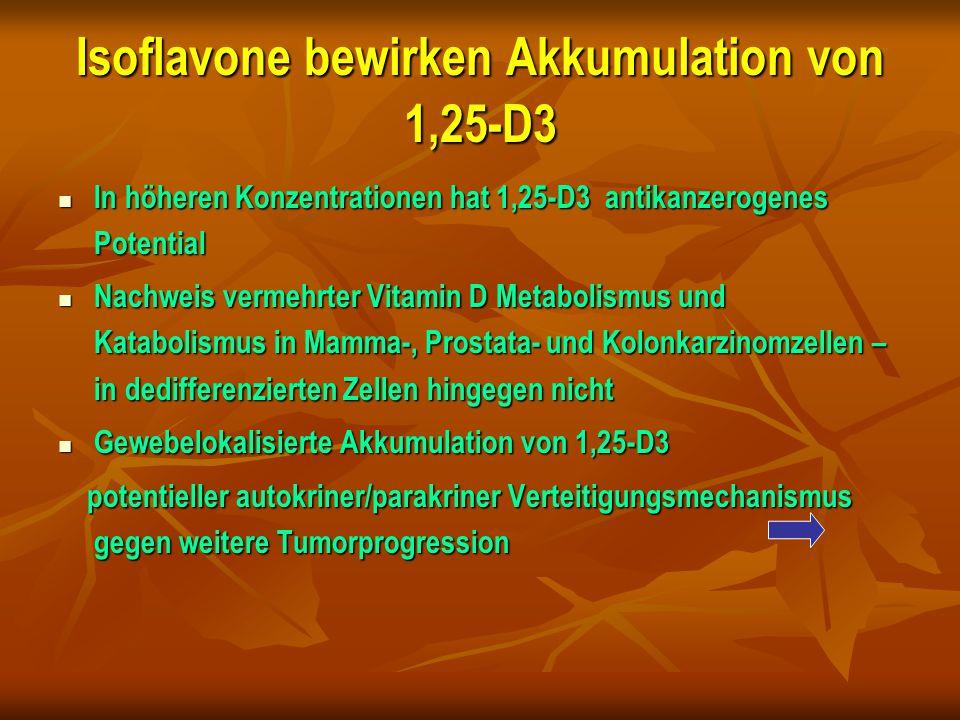 Isoflavone bewirken Akkumulation von 1,25-D3