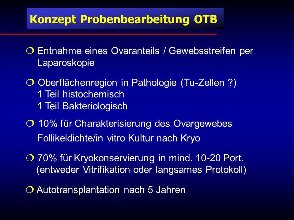 Konzept Probenbearbeitung OTB