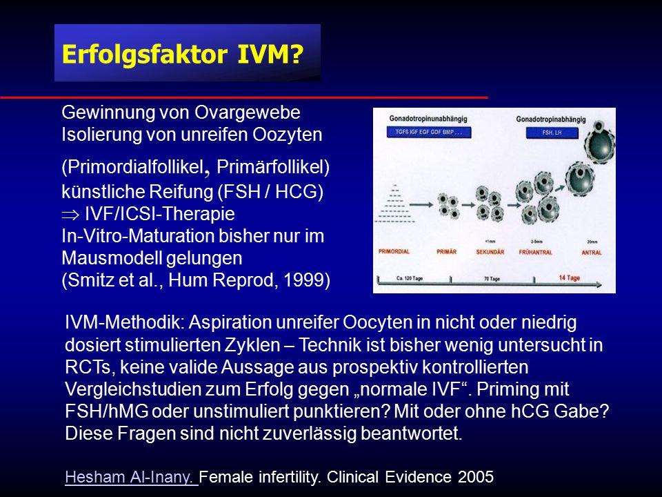 Erfolgsfaktor IVM