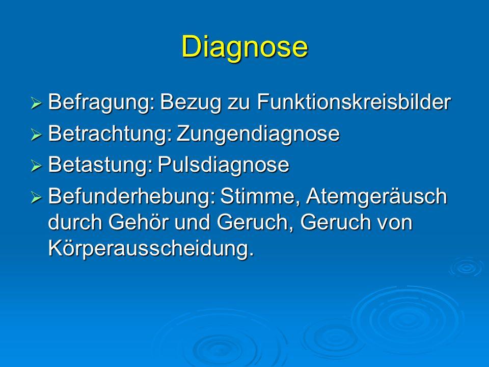 Diagnose Befragung: Bezug zu Funktionskreisbilder