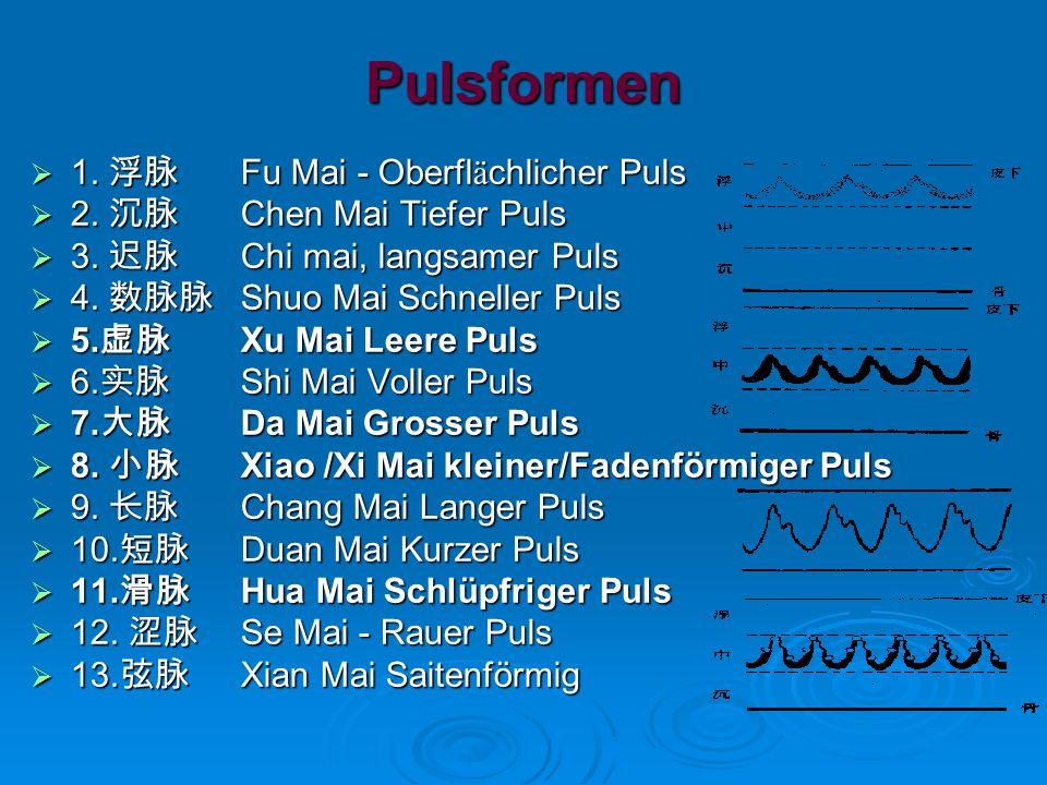 Pulsformen 1. 浮脉 Fu Mai - Oberflächlicher Puls
