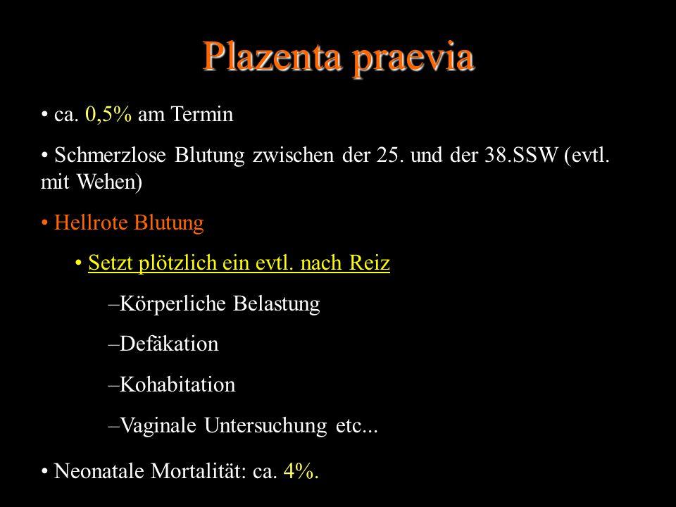 Plazenta praevia ca. 0,5% am Termin