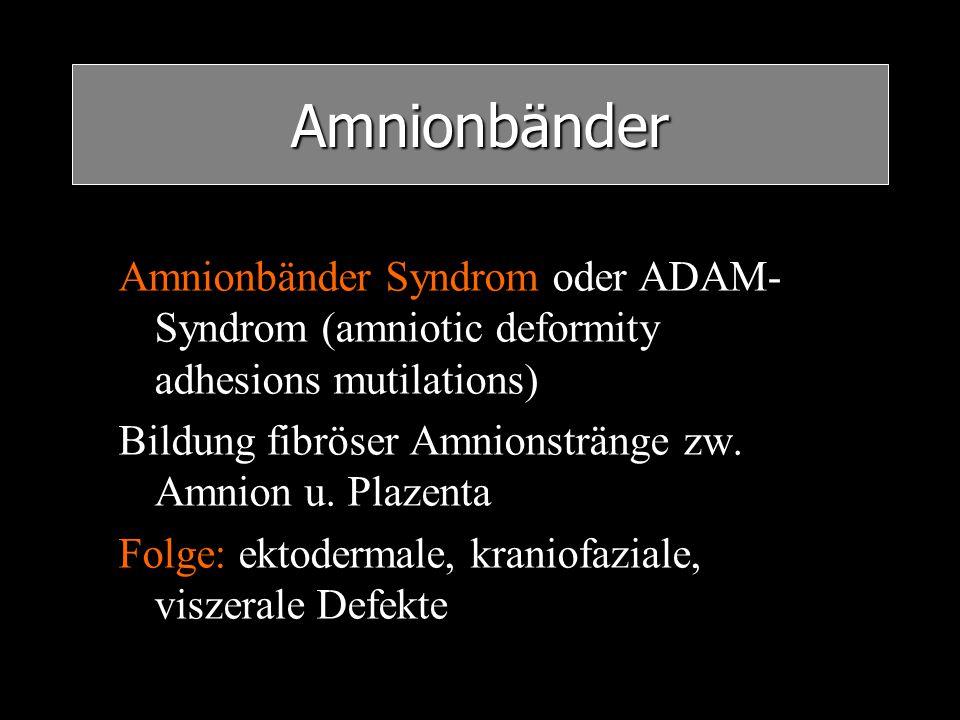 Amnionbänder Amnionbänder Syndrom oder ADAM-Syndrom (amniotic deformity adhesions mutilations) Bildung fibröser Amnionstränge zw. Amnion u. Plazenta.
