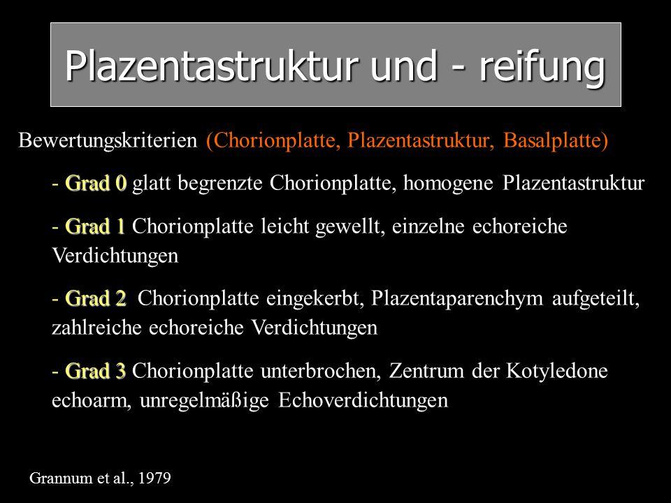 Plazentastruktur und - reifung