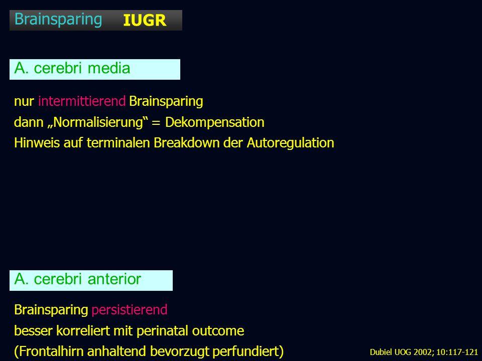 Brainsparing IUGR A. cerebri media A. cerebri anterior