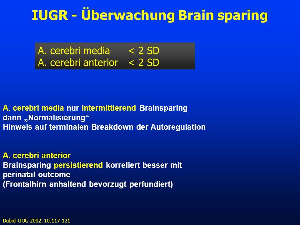 IUGR - Überwachung Brain sparing