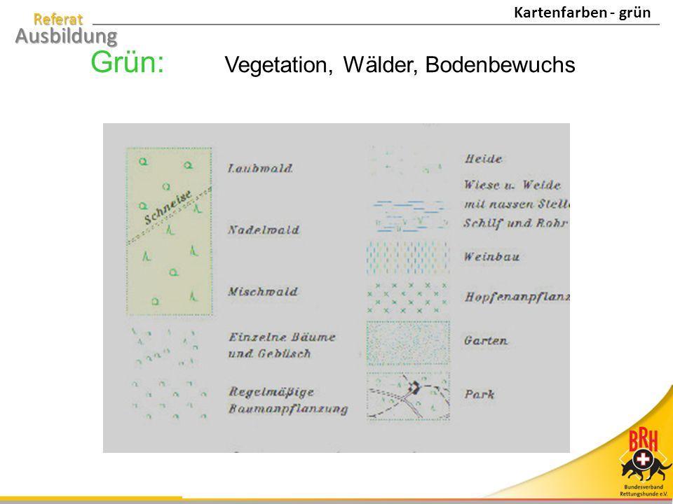 Grün: Vegetation, Wälder, Bodenbewuchs