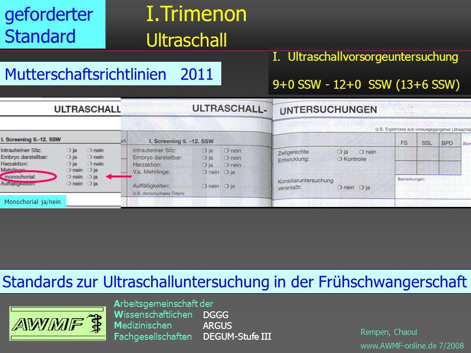 I.Trimenon Ultraschall geforderter Standard