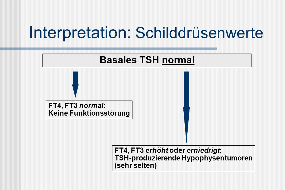 Interpretation: Schilddrüsenwerte