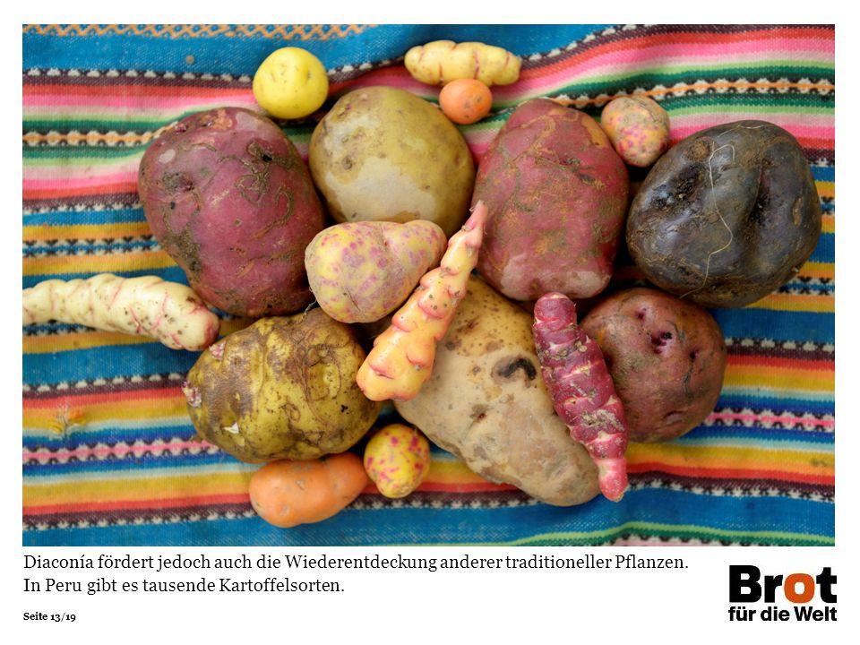 Diaconía fördert jedoch auch die Wiederentdeckung anderer traditioneller Pflanzen.