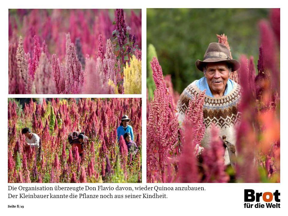 Die Organisation überzeugte Don Flavio davon, wieder Quinoa anzubauen