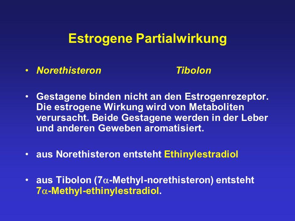 Estrogene Partialwirkung