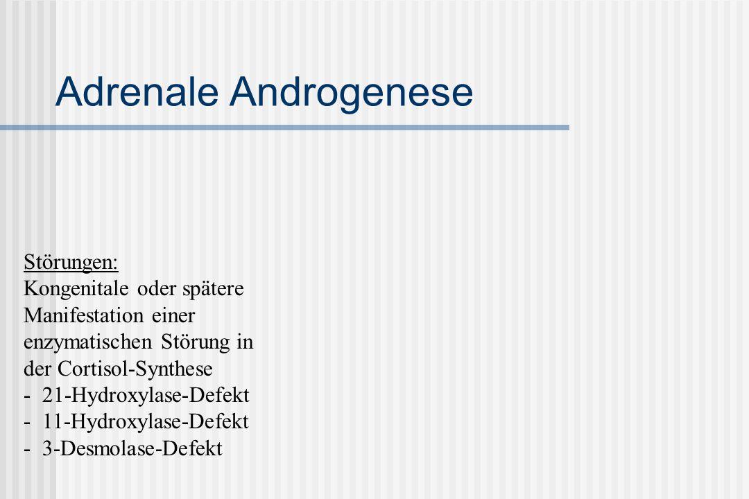 Adrenale Androgenese Störungen:
