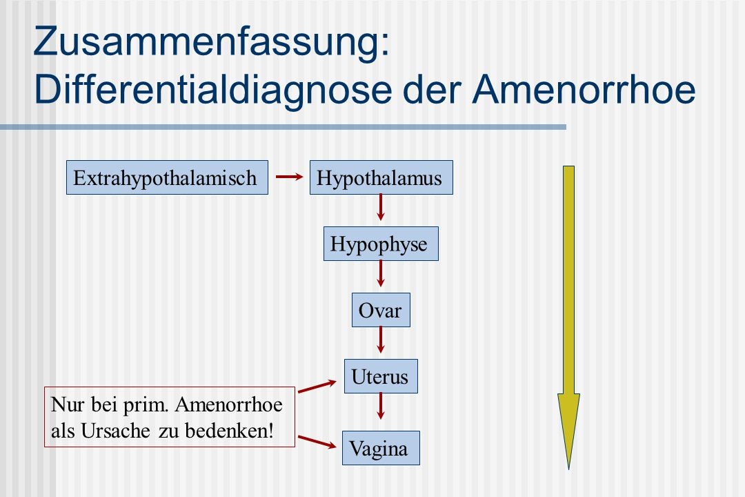 Zusammenfassung: Differentialdiagnose der Amenorrhoe
