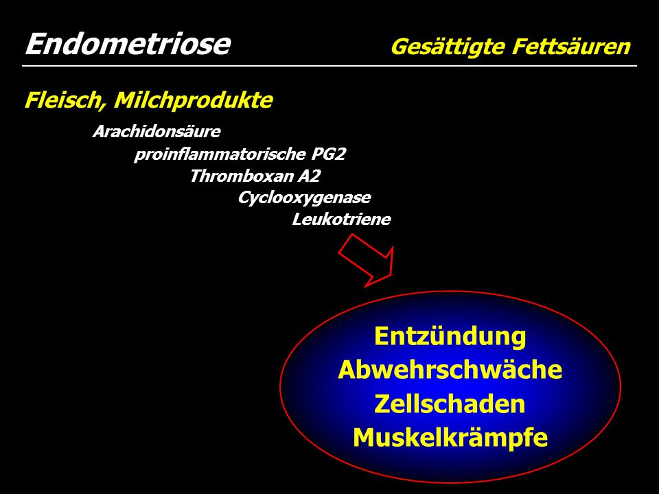 Endometriose Gesättigte Fettsäuren