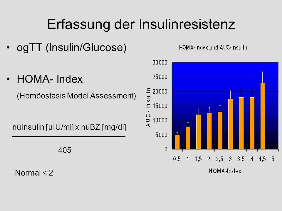 Erfassung der Insulinresistenz
