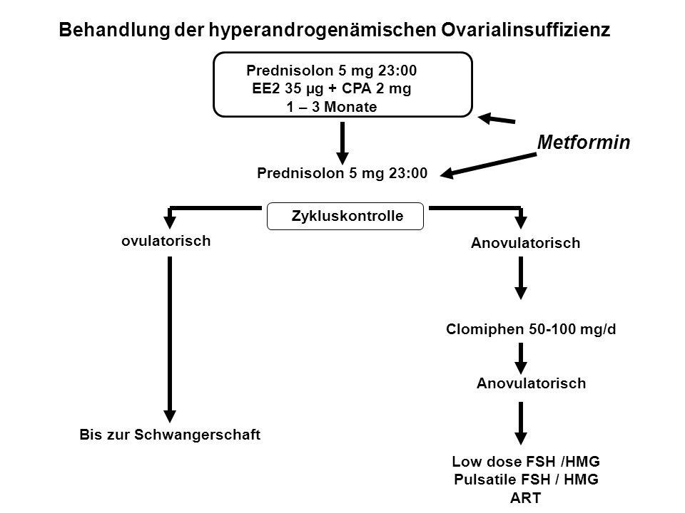 Behandlung der hyperandrogenämischen Ovarialinsuffizienz ovulatorisch