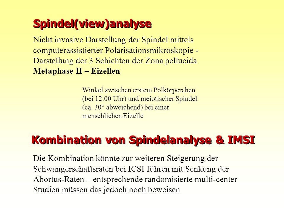 Kombination von Spindelanalyse & IMSI