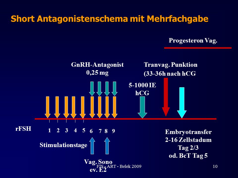 Embryotransfer 2-16 Zellstadum Tag 2/3 od. BcT Tag 5