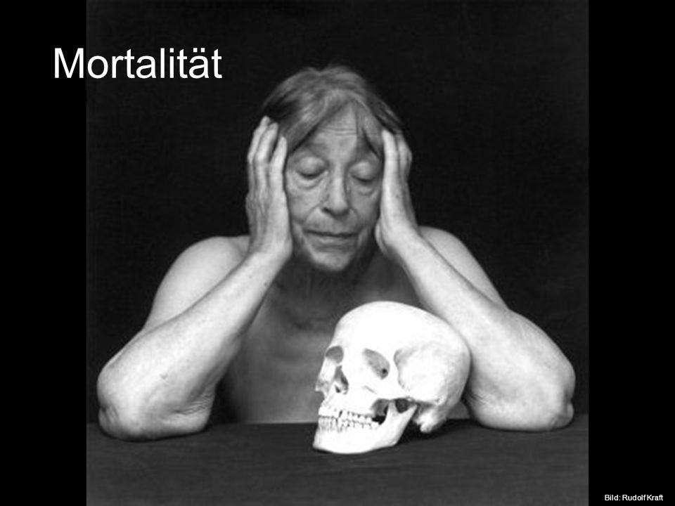 Mortalität Bild von einem Kollegen, zu finden unter http://www.totentanz-online.de/kuenstler/kraft.php.