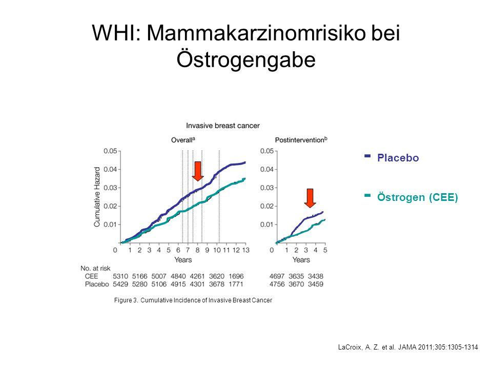 WHI: Mammakarzinomrisiko bei Östrogengabe
