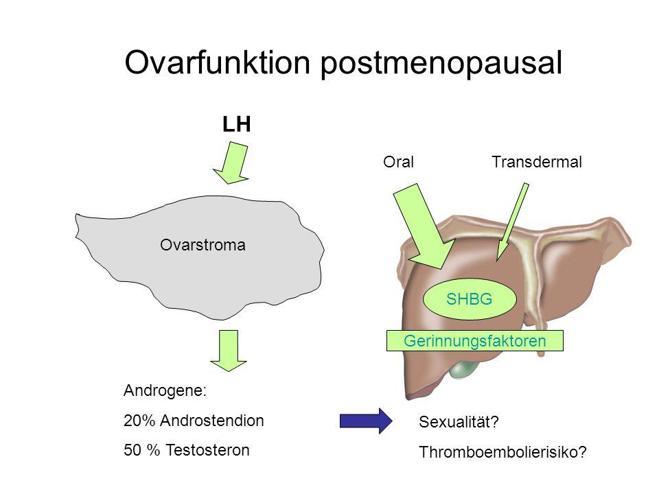 Ovarfunktion postmenopausal