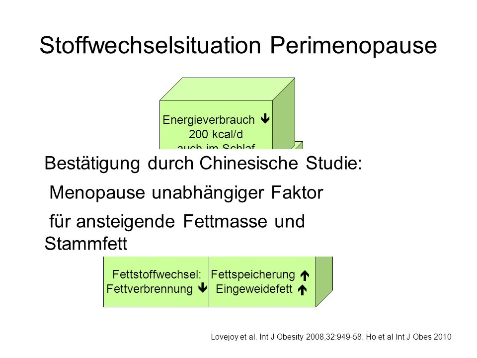 Stoffwechselsituation Perimenopause