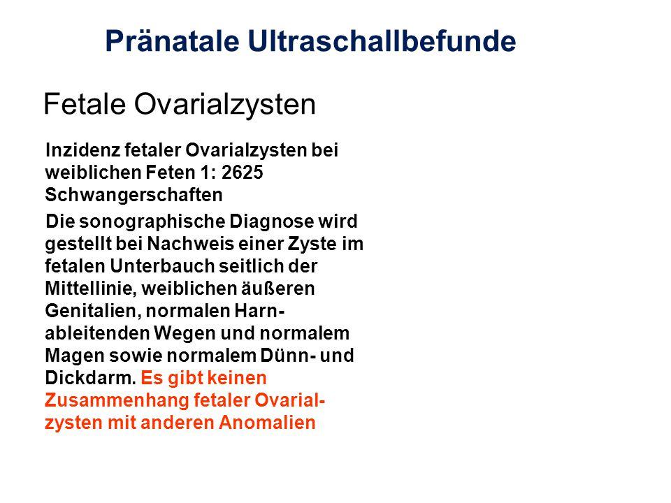 Pränatale Ultraschallbefunde