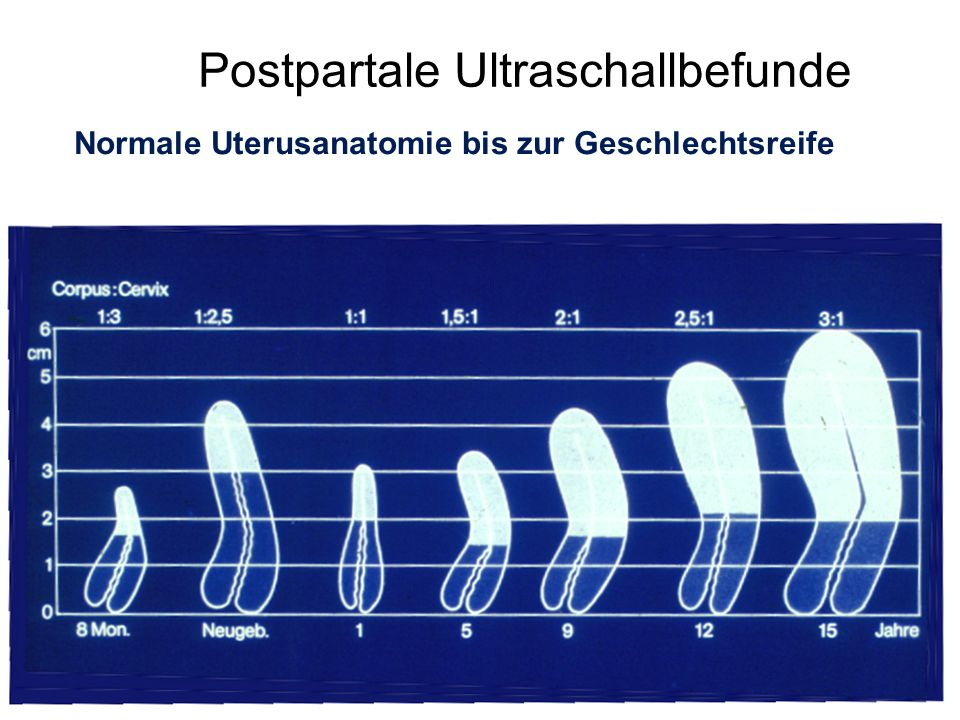 Postpartale Ultraschallbefunde