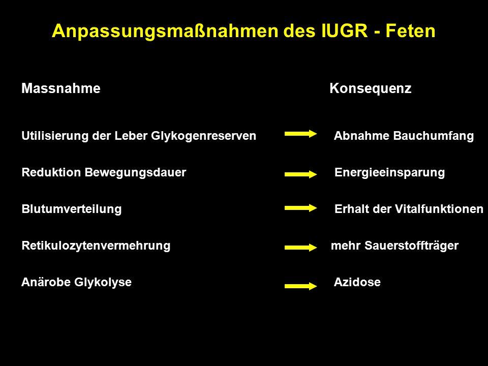 Anpassungsmaßnahmen des IUGR - Feten