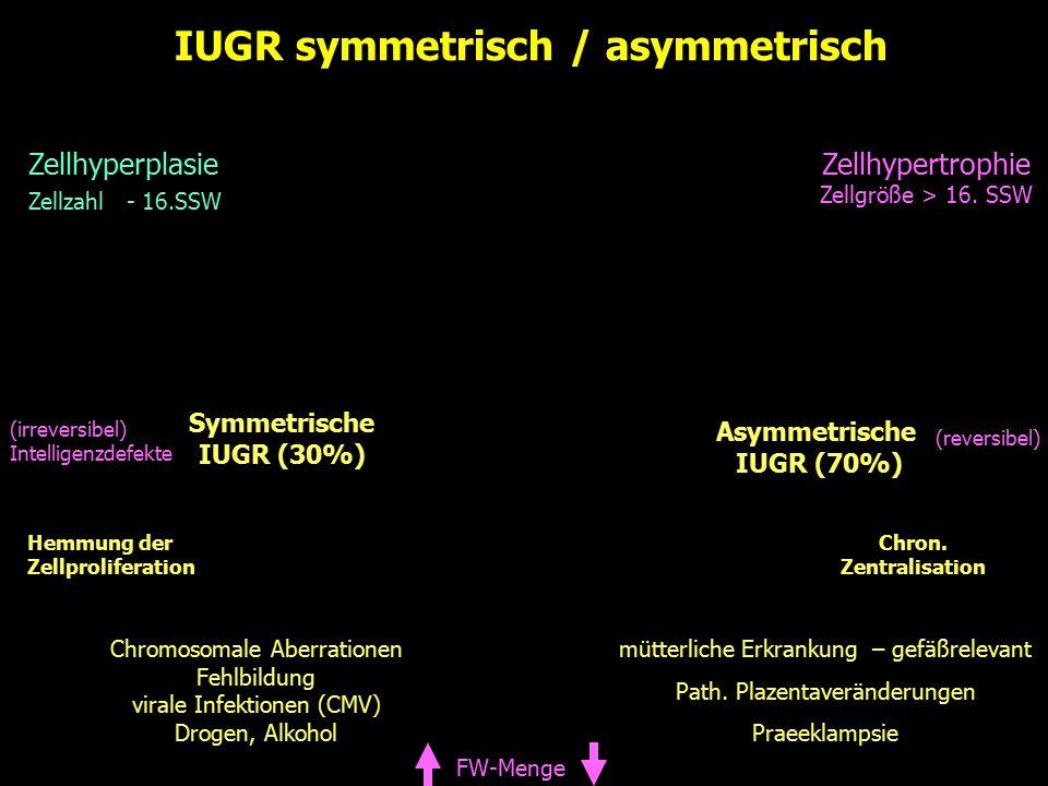 IUGR symmetrisch / asymmetrisch