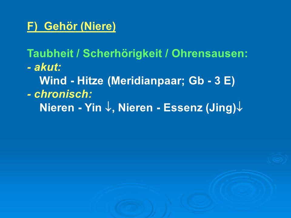 F) Gehör (Niere) Taubheit / Scherhörigkeit / Ohrensausen: - akut: Wind - Hitze (Meridianpaar; Gb - 3 E)